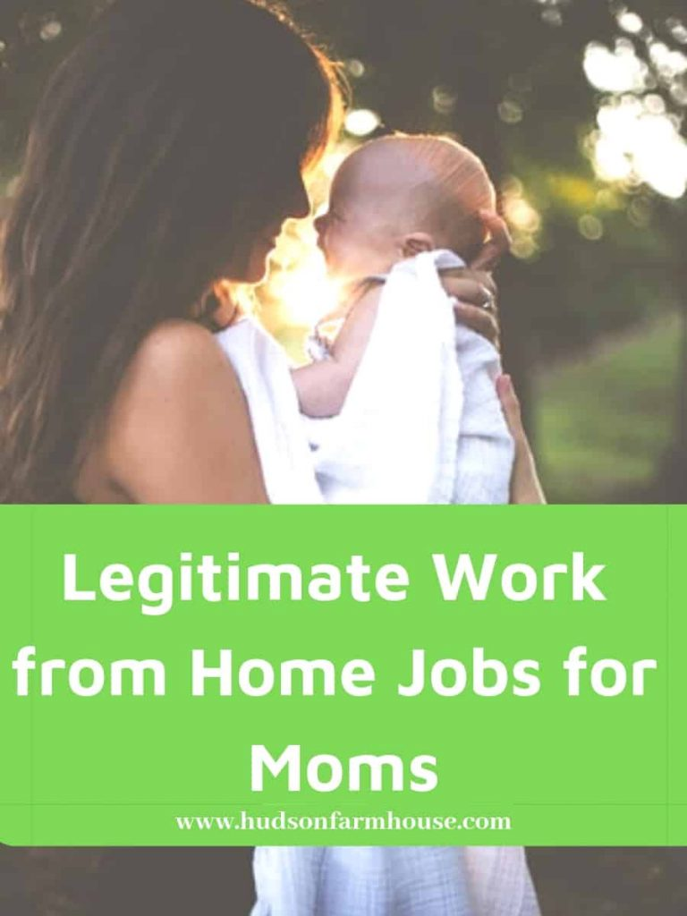 Find the best work from home jobs 2018 and 2019. Hudson Farmhouse shares ideas and inspiration for legitimate money making jobs for moms. Want to see funny working from home images? stay at home moms