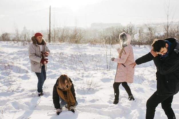 People playing snowballs in winter forest Free Photo